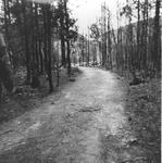 1150-13.jpg