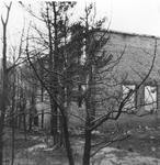1150-2.jpg
