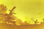 1405-2.jpg